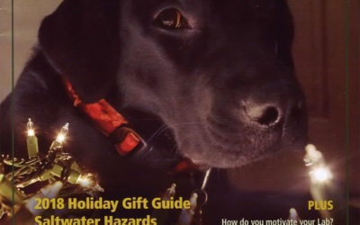 Seen in Just Labs Magazine: 2018 Holiday Guide