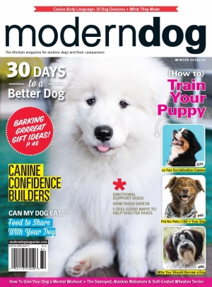 As Seen In Modern Dog: 2018 Gift Guide